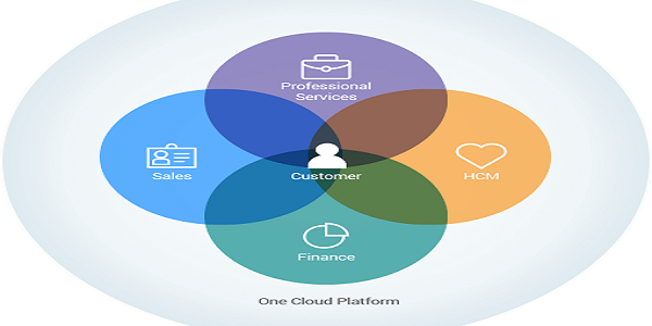 Salesforce Professional Services