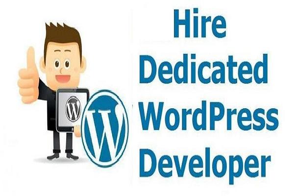 dedicated WordPress developer