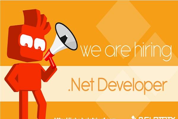 hire .net developers