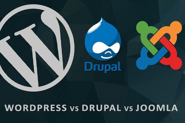 wordpress_drupal_joomla_web_design