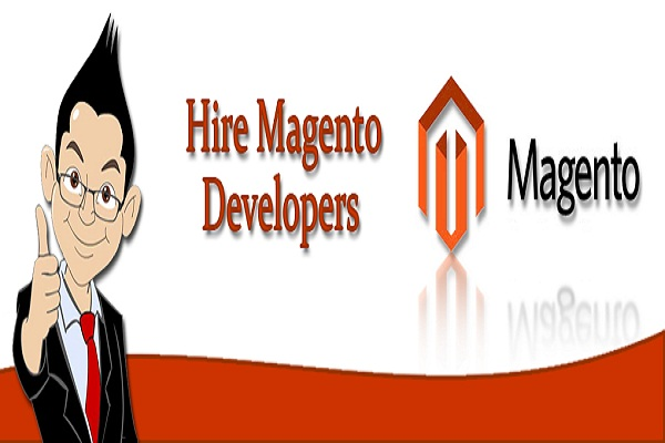dedicated Magento developer